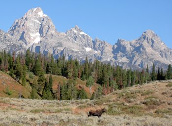 teton mountains pottery inspiration photo